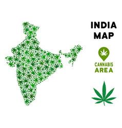 Marijuana collage india map vector