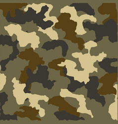 military national uniform cloth background vector image