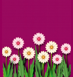 paper cut the spring flowers of chamomile on a vector image