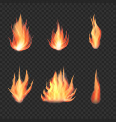 transparent realistic fire flame bonfire set vector image