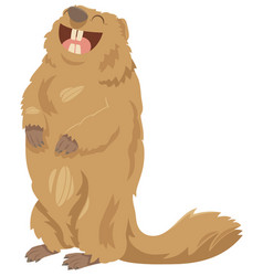 cartoon marmot animal character vector image vector image