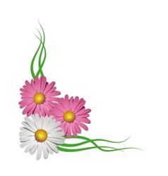 Floral corner vignette vector image vector image
