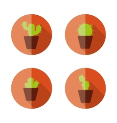 cactus flat icons vector image