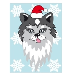 Christmas husky Use for vector image