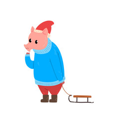 cute funny pig character dressed in warm bright vector image