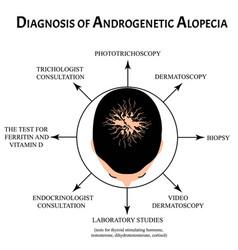 Diagnosis alopecia bald spot baldness vector