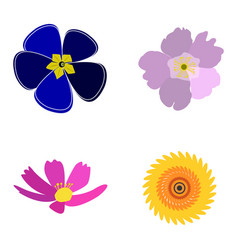 set of colored flowers vector image