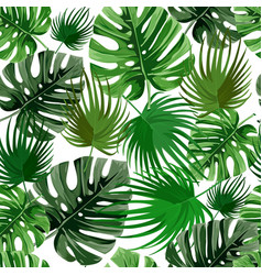 tropical palm leaves jungle leaves seamless vector image