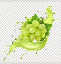 white grape branch in grape juice splash vector image