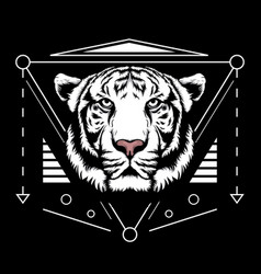 white tiger scared geometry vector image