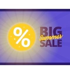 Big summer sale vector image