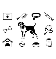 Dog vet clinic icons vector image vector image
