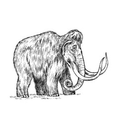 Big mammoth extinct animal ancestors of vector