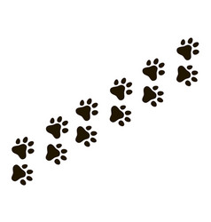 cats paw trail footprints wolf cat dog puppy vector image