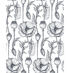 Floral seamless pattern with hand drawn poppy vector