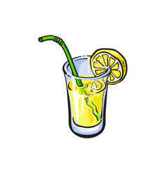 Lemonade glass with straw lemon slice vector
