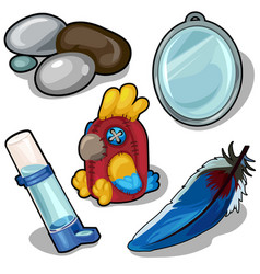 parrot and accessories therefor isolated vector image