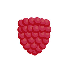 Ripe soft raspberry as healthy detox ingredient vector