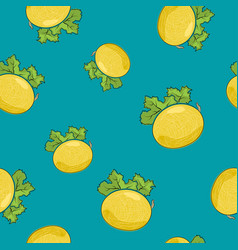 Seamless pattern melon on azure background vector