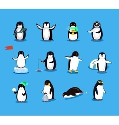 Set of Animal Pinguin Design Flat vector image