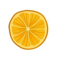 Slice of fresh or dry orange citrus fruit vector