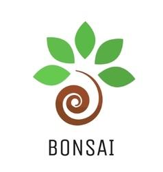 Bonsai tree logo icon vector image