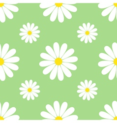 Green background seamless pattern with chamomiles vector image