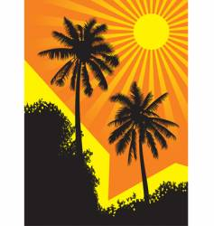 sunlit palm trees vector image vector image