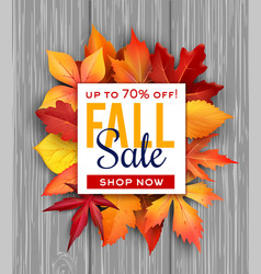 Autumn sale poster fall foliage leaf bunch vector