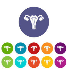 female reproductive organ icons set color vector image