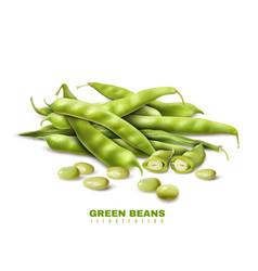 green beans realistic image vector image