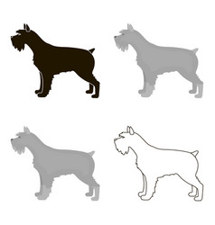 schnauzer icon in cartoon style for web vector image