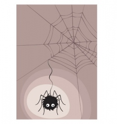 spider in cobweb vector image