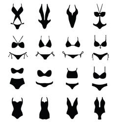 swimwear and bikini vector image