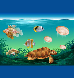 Underwater scene with many sea animals vector