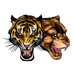 combined faces lion and tiger vector image