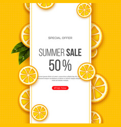 summer sale banner with sliced orange pieces vector image