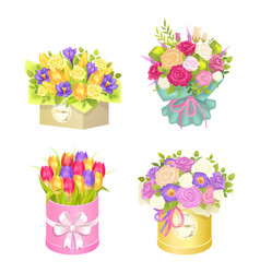 Bouquets in box collection vector