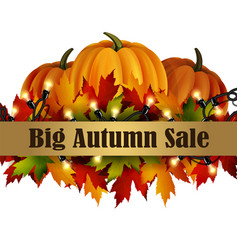 autumn special sale poster isolated vector image