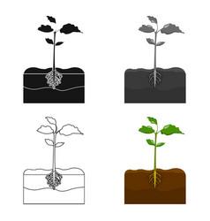 Plants single icon in cartoon styleplants vector