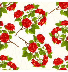 Seamless texture branch red hibiscus vector
