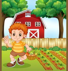 A boy harvest vegetable vector