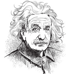 albert einstein portrait vector image