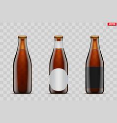 craft beer bottle set mockup vector image