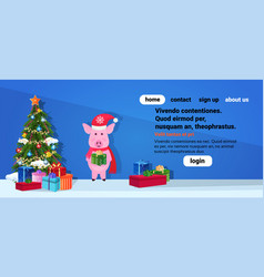 pig holding gift box standing near fir tree happy vector image