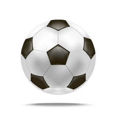 realistic detailed soccer ball vector image