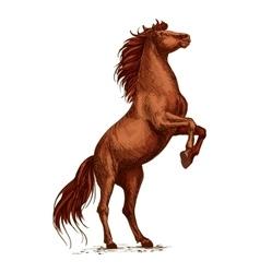 Wild arabian horse stallion raging and rearing vector image