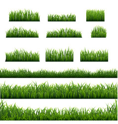 Big set green grass borders background vector