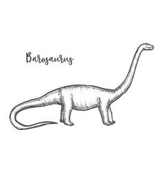 brontosaurus sketch or engraved diplodocus vector image