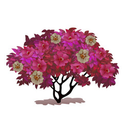 fancy a bush covered with flowers fantasy nature vector image